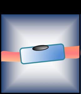 Descripcion celulas de schwann y nodos de ranvier
